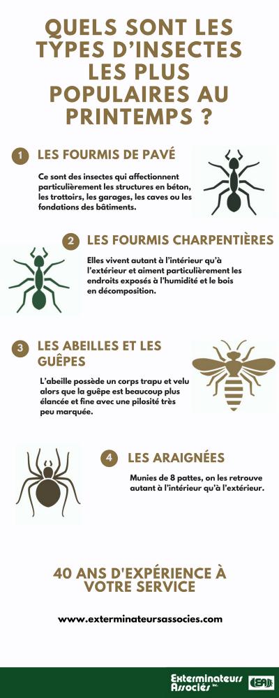 Infographie - Quels sont les types d'insectes les plus populaires au printemps, Exterminateurs Associés