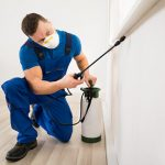 Exterminators in Montreal, insecticide sale