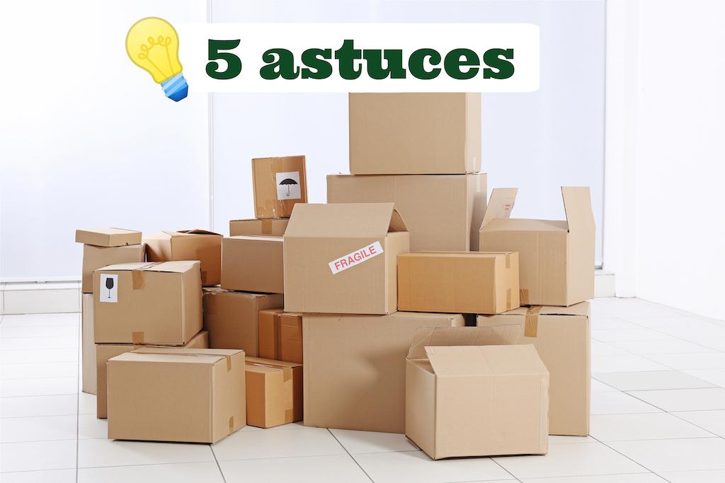 boites de déménagement, gestion parasitaire à Montréal