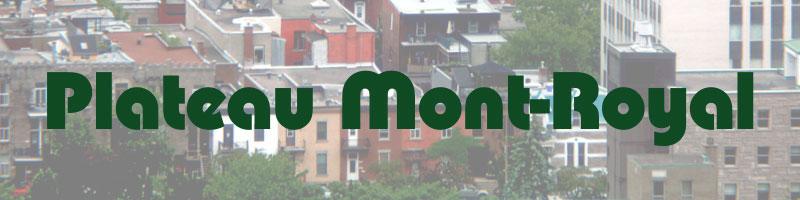 Plateau Mont-Royal exterminator