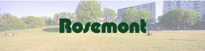 Rosemont exterminator pest control